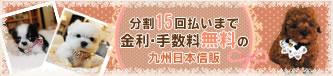 九州日本信販