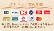 クレジット対応可能