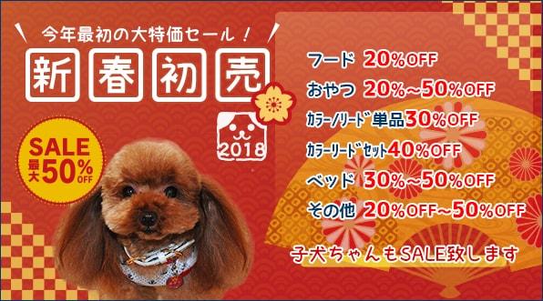 新春!初売りセール開催